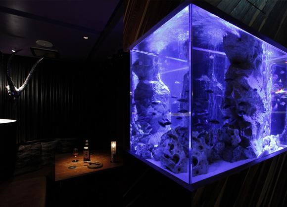 Xmas期間中(12/23~25)は海底個室も2名様からご利用いただけます。